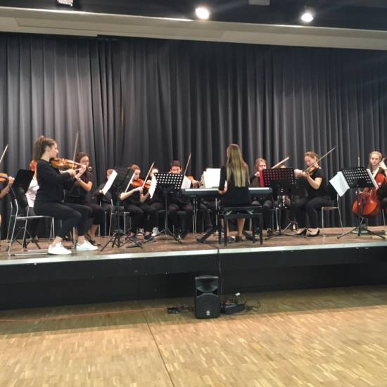 Schulen musizieren